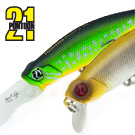 Preference Shad